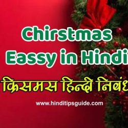 long essay on christmas in hindi